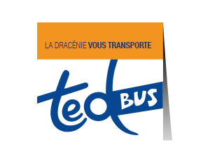 Ted Bus